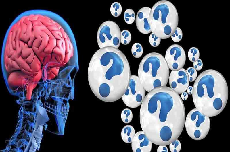 Descubierto un factor para identificar los tumores cerebrales de buen pronóstico