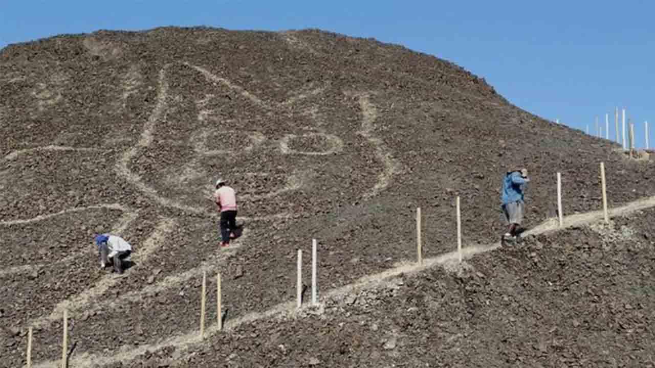 Descubierto un geoglifo de 37 metros con la figura de un gato en Nazca (Perú)
