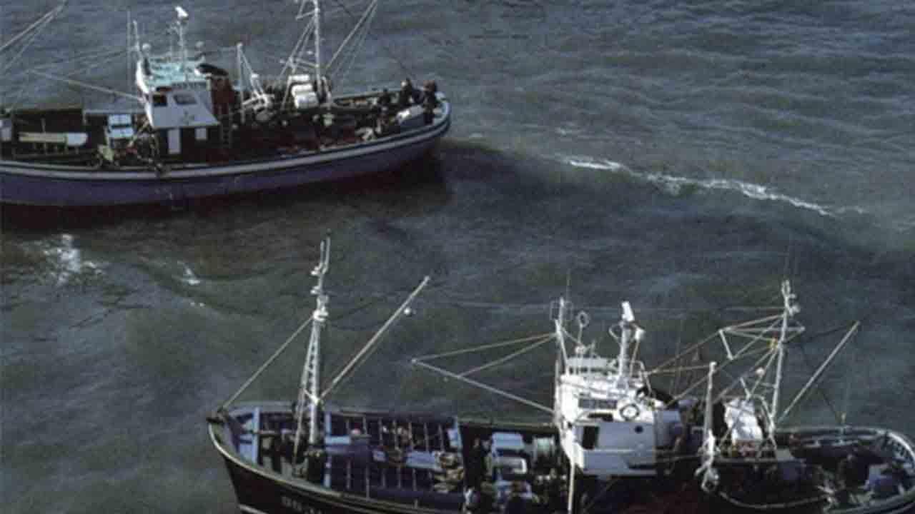 Agricultura, Pesca y Alimentación prorroga el plan de gestión integral en el Mediterráneo