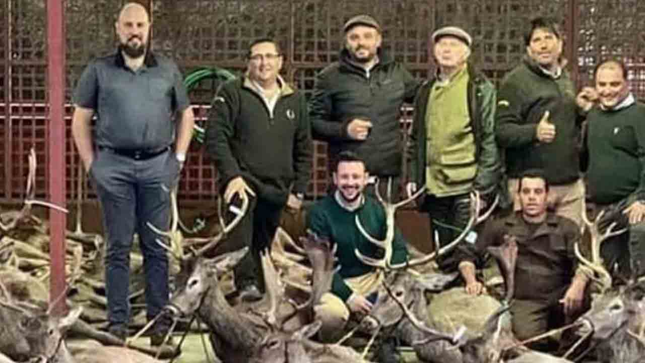 Cazadores españoles masacran 540 animales en Portugal en sólo dos días