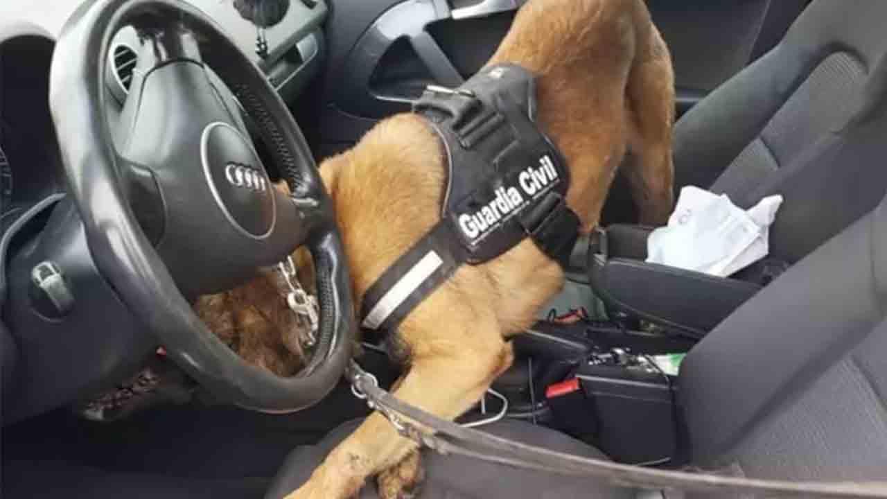 Pillado con dos kilos de hachís gracias a un perro de la Guardia Civil