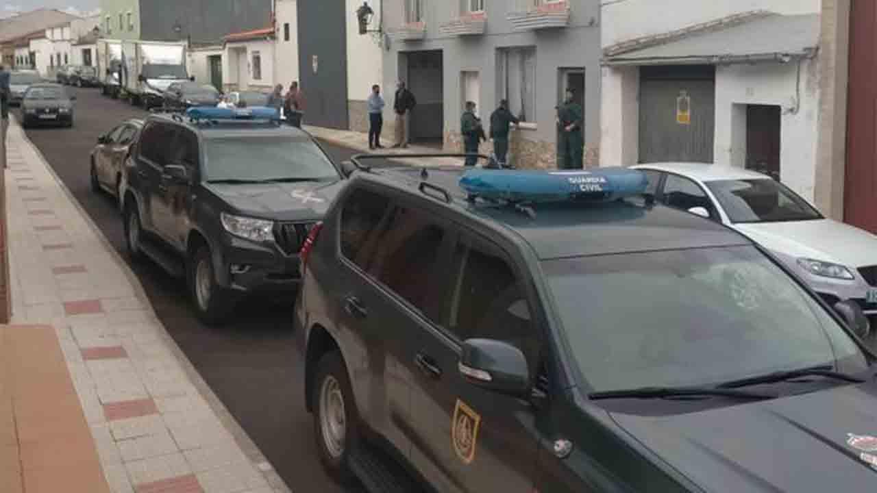 Desarticuladas varias organizaciones dedicadas al cultivo de marihuana en Badajoz